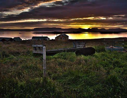 Flatey Island In Iceland