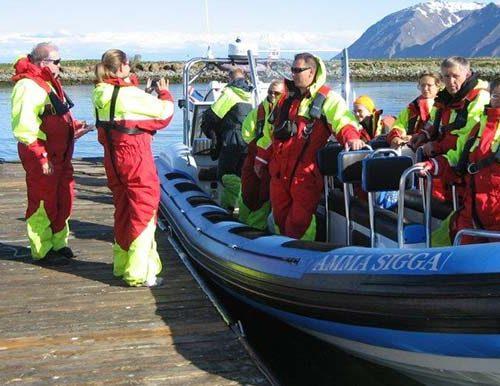 Flatey Island Speedboat