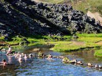 Landmannalaugar Pool In Iceland