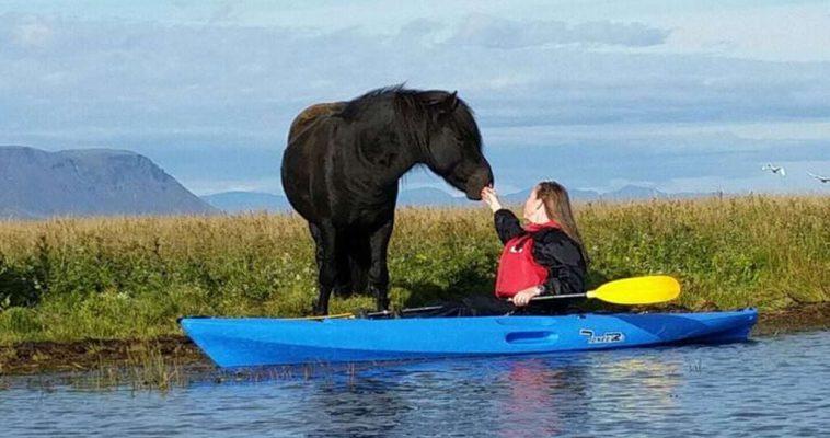 Kayking in Icelandic nature
