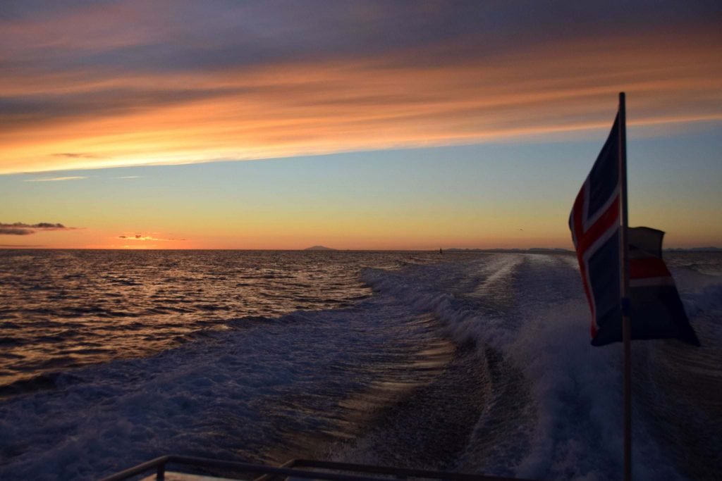 Sailing in the sunset in Iceland