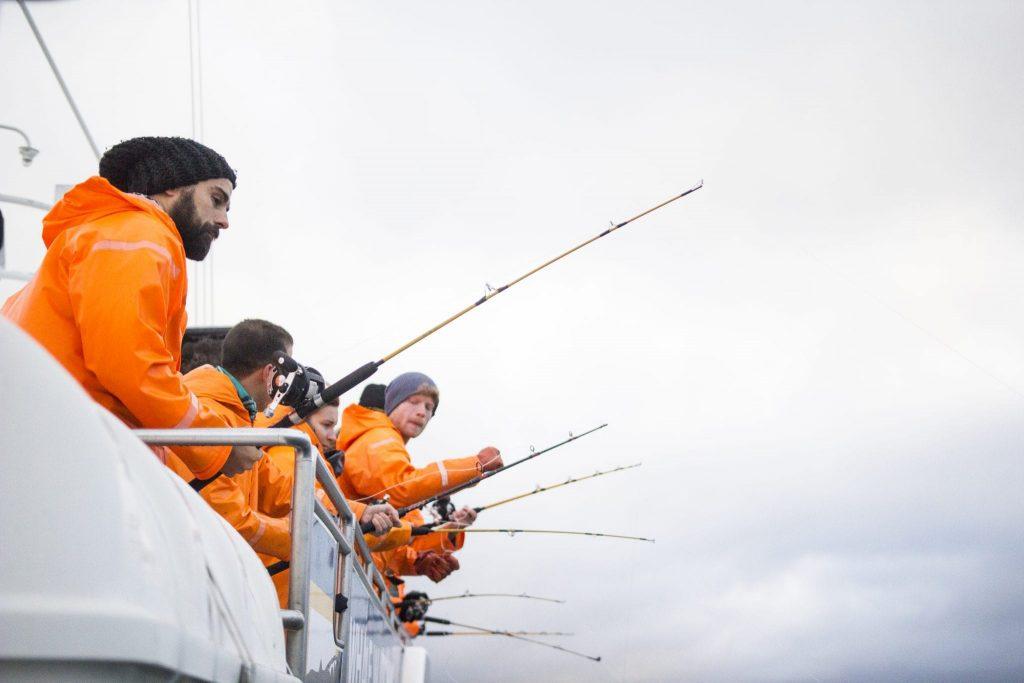 Sea angling in Reykjavik, Iceland