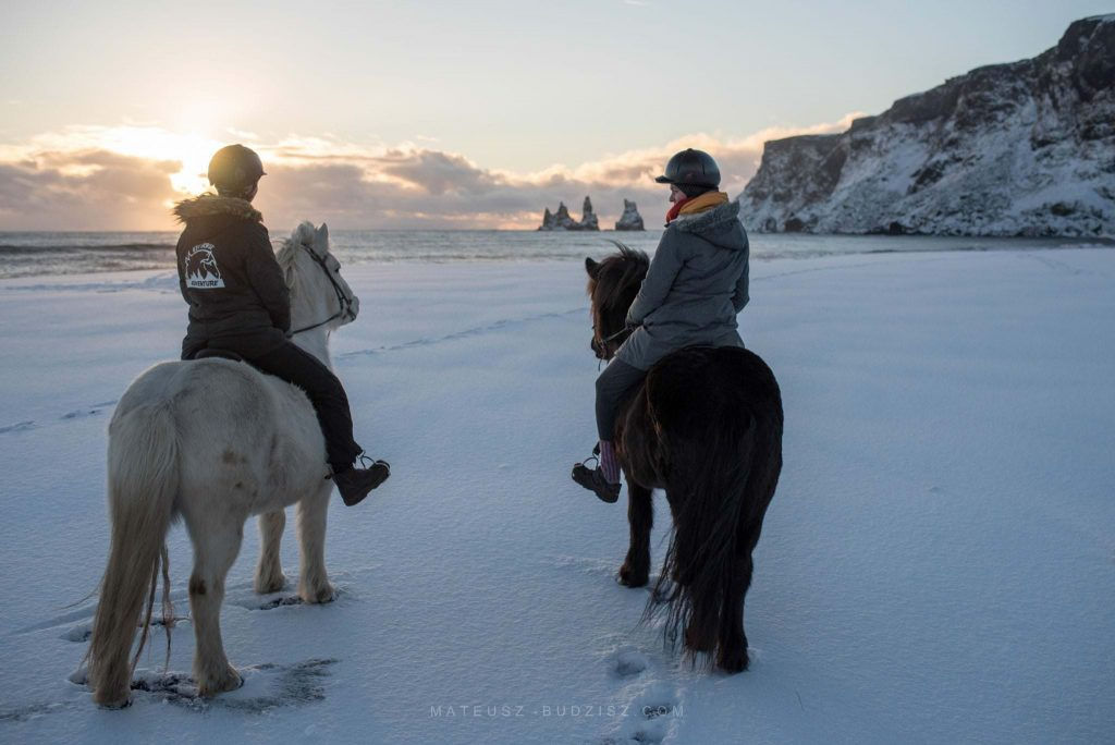 Horse riding near Vik in Iceland
