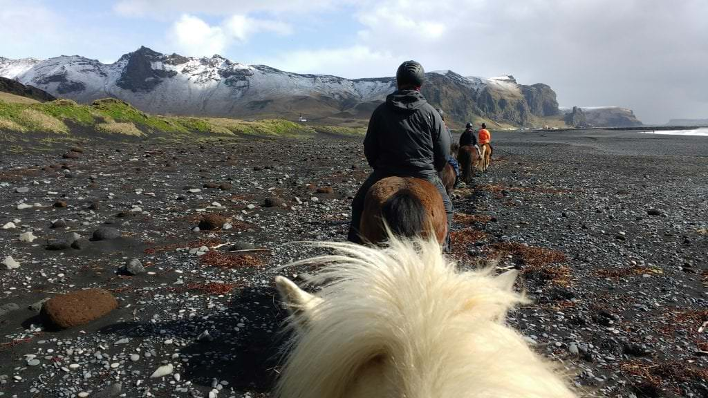 Horseback riding, Vík, South Iceland